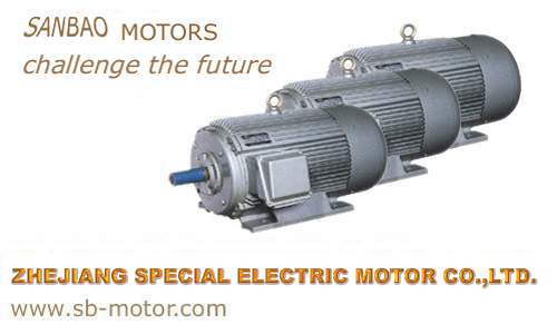 Welcome To Zhejiang Special Electric Motor Co Ltd